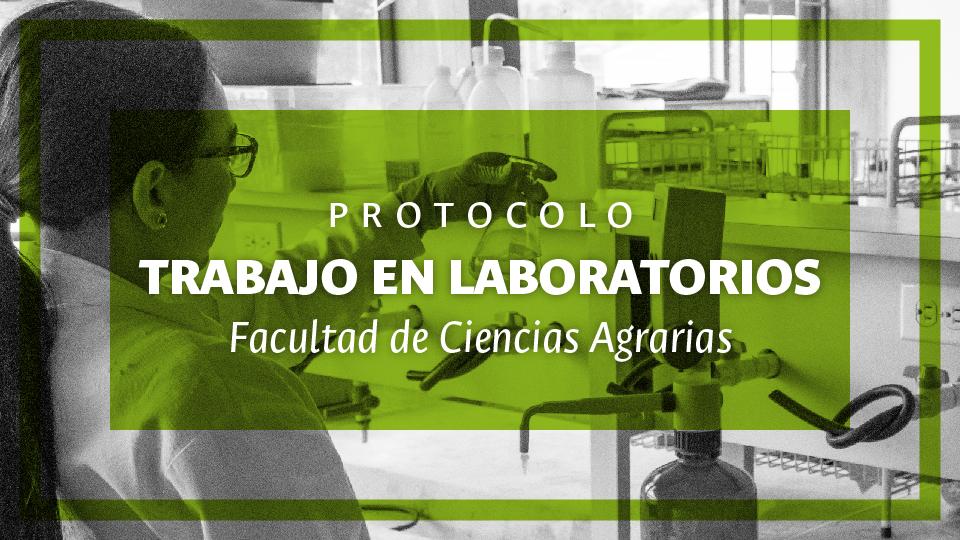 banner_protocolo_de_laboratorios_mesa_de_trabajo_1.jpg